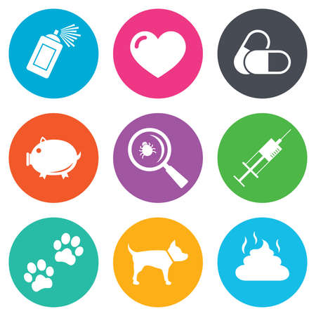 feces: Veterinary, pets icons. Dog paws, syringe and magnifier signs. Pills, heart and feces symbols. Flat circle buttons. Vector Illustration
