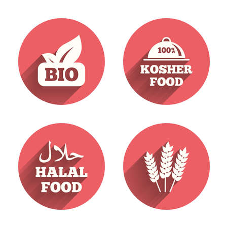 kosher: Natural Bio food icons. Halal and 100% Kosher signs. Gluten free agricultural symbol. Pink circles flat buttons with shadow. Vector Illustration