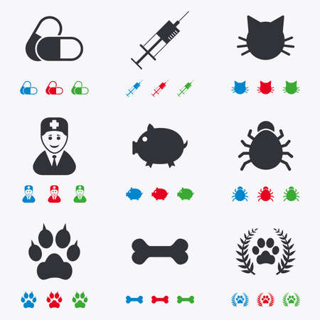 Veterinary, pets icons. Paw, syringe and bone signs. Pills, cat and doctor symbols. Flat black, red, blue and green icons.