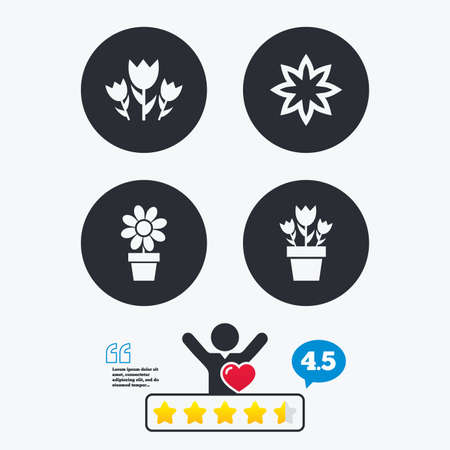 camomiles macro: Flowers icons. Bouquet of roses symbol. Flower with petals and leaves in a pot. Star vote ranking. Client like and think bubble. Quotes with message. Illustration