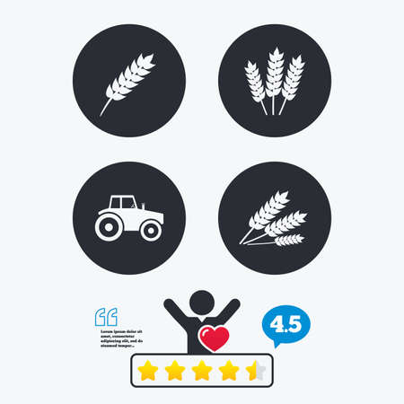 corn stalk: Agricultural icons. Wheat corn or Gluten free signs symbols. Tractor machinery. Star vote ranking. Client like and think bubble. Quotes with message.