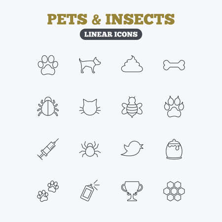 feces: Pets and Insects icons. Dog paw. Cat paw with clutches. Bone, feces excrement and vaccination. Honey, bee and honey comb. Linear icons on white background. Illustration