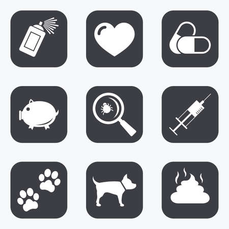 feces: Veterinary, pets icons. Dog paws, syringe and magnifier signs. Pills, heart and feces symbols. Flat square buttons with rounded corners.