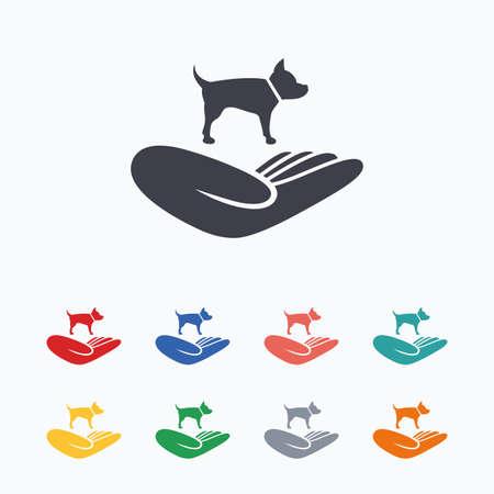 animal shelter: Shelter pets sign icon. Hand holds dog symbol. Animal protection. Colored flat icons on white background.