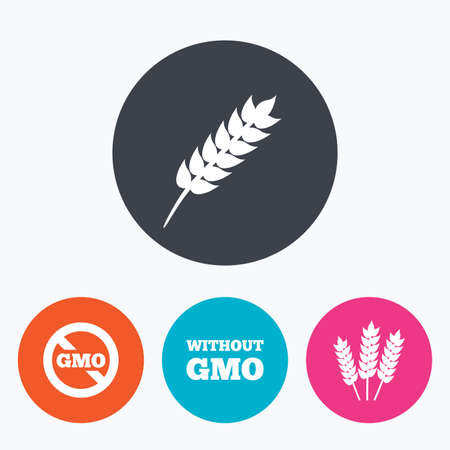 genetically modified crops: Agricultural icons. Gluten free or No gluten signs. Without Genetically modified food symbols. Circle flat buttons with icon.