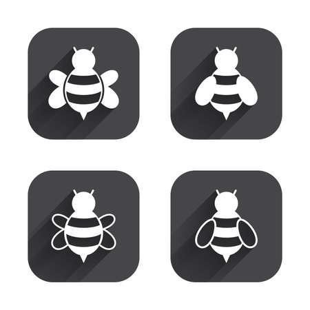 sting: Honey bees icons. Bumblebees symbols. Flying insects with sting signs. Square flat buttons with long shadow. Illustration