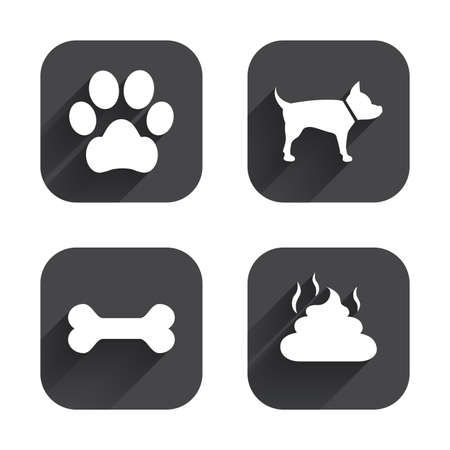 feces: Pets icons. Dog paw and feces signs. Clean up after pets. Pets food. Square flat buttons with long shadow.