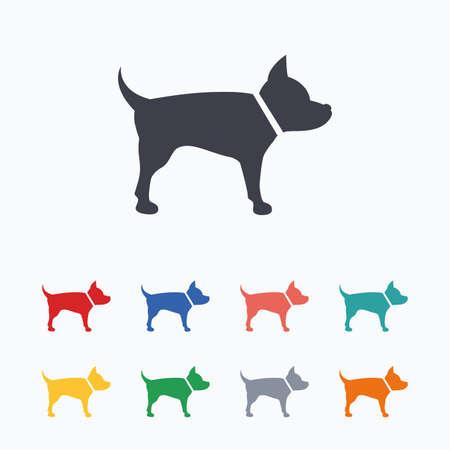 dog allowed: Dog sign icon. Pets symbol. Colored flat icons on white background. Illustration