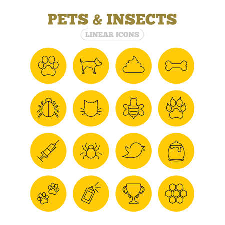 feces: Pets and Insects icons. Dog paw. Cat paw with clutches. Bone, feces excrement and vaccination. Honey, bee and honey comb. Linear icons on yellow buttons.
