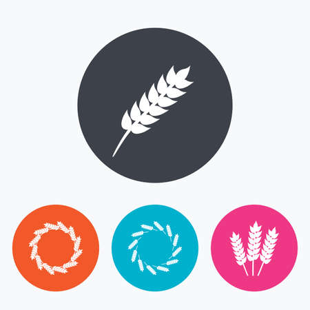 crop: Agricultural icons. Gluten free or No gluten signs. Wreath of Wheat corn symbol. Circle flat buttons with icon.