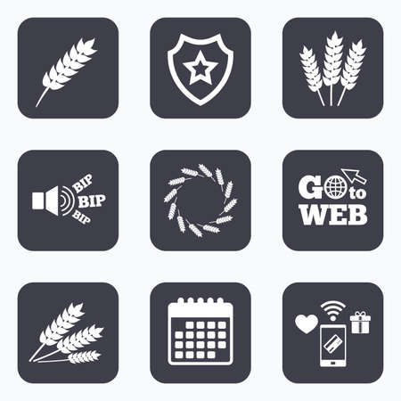 corn stalk: Mobile payments, wifi and calendar icons. Agricultural icons. Gluten free or No gluten signs. Wreath of Wheat corn symbol. Go to web symbol.