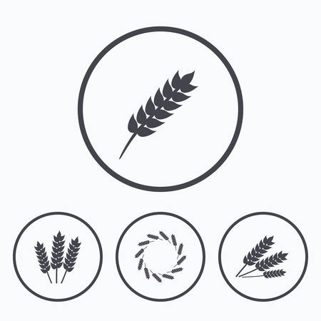 agricultural: Agricultural icons. Gluten free or No gluten signs. Wreath of Wheat corn symbol. Icons in circles. Illustration