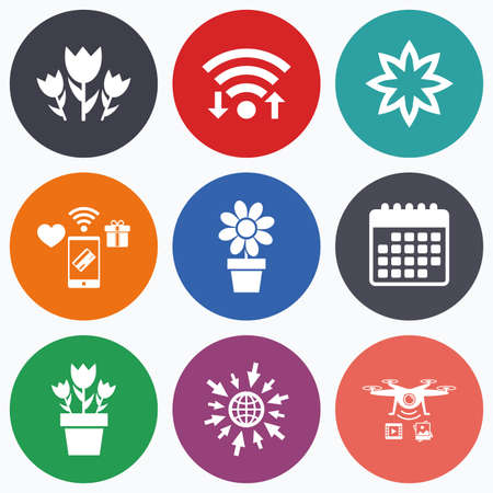 camomiles macro: Wifi, mobile payments and drones icons. Flowers icons. Bouquet of roses symbol. Flower with petals and leaves in a pot. Calendar symbol.
