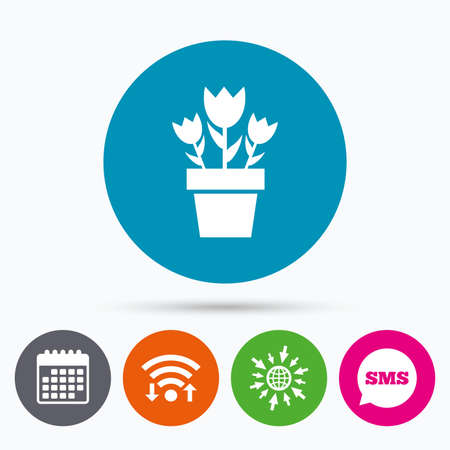 macro flowers: Wifi, Sms and calendar icons. Flowers in pot icon. Bouquet of roses. Macro sign. Go to web globe.