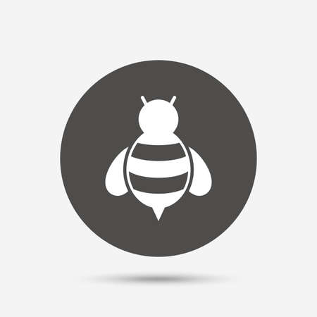 pollination: Bee sign icon. Honeybee or apis with wings symbol. Flying insect. Gray circle button with icon. Vector Illustration