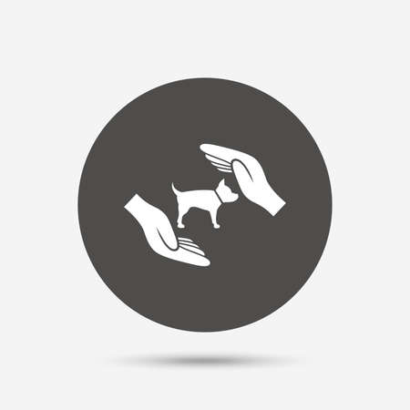 protection hands: Protection of animals pets sign icon. Hands protect dog symbol. Shelter for dogs. Animals insurance. Gray circle button with icon. Vector