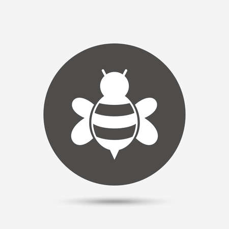apis: Bee sign icon. Honeybee or apis with wings symbol. Flying insect. Gray circle button with icon. Vector Illustration