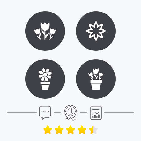 camomiles macro: Flowers icons. Bouquet of roses symbol. Flower with petals and leaves in a pot. Chat, award medal and report linear icons. Star vote ranking. Vector Illustration