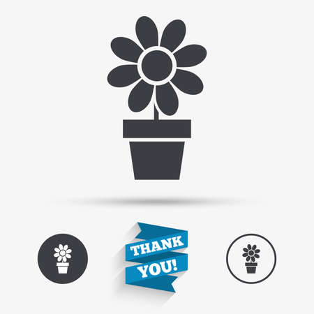 macro flowers: Flowers in pot icon. Bouquet of flowers with petals. Macro sign. Flat icons. Buttons with icons. Thank you ribbon. Vector
