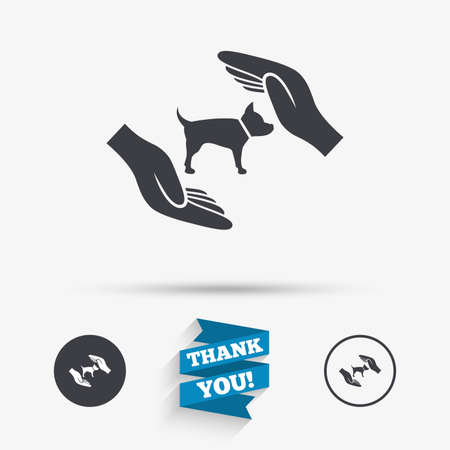 shelter: Protection of animals pets sign icon. Hands protect dog symbol. Shelter for dogs. Animals insurance. Flat icons. Buttons with icons. Thank you ribbon. Vector