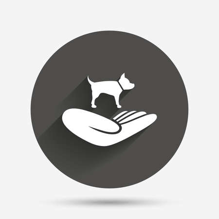 animal shelter: Shelter pets sign icon. Hand holds dog symbol. Animal protection. Circle flat button with shadow. Vector