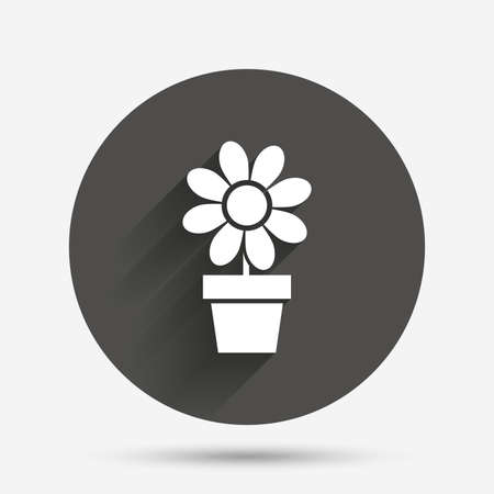 macro flowers: Flowers in pot icon. Bouquet of flowers with petals. Macro sign. Circle flat button with shadow. Vector