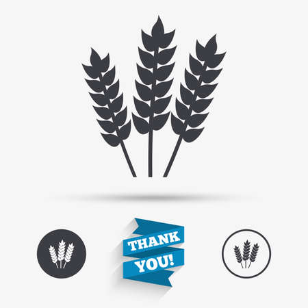 Agricultural sign icon. Gluten free or No gluten symbol. Flat icons. Buttons with icons. Thank you ribbon. Vector