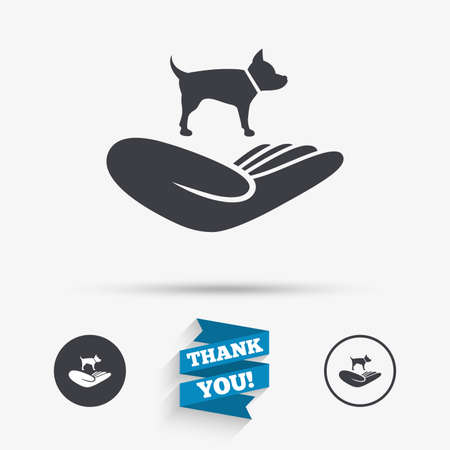 animal shelter: Shelter pets sign icon. Hand holds dog symbol. Animal protection. Flat icons. Buttons with icons. Thank you ribbon. Vector