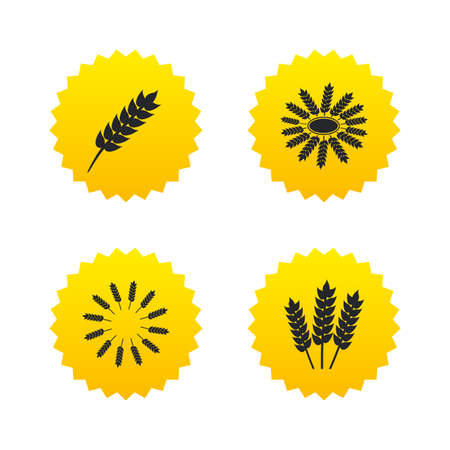crop circles: Agricultural icons. Gluten free or No gluten signs. Wreath of Wheat corn symbol. Yellow stars labels with flat icons. Vector