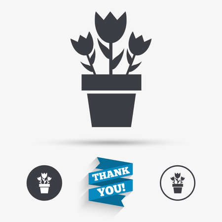 macro flowers: Flowers in pot icon. Bouquet of roses. Macro sign. Flat icons. Buttons with icons. Thank you ribbon. Vector