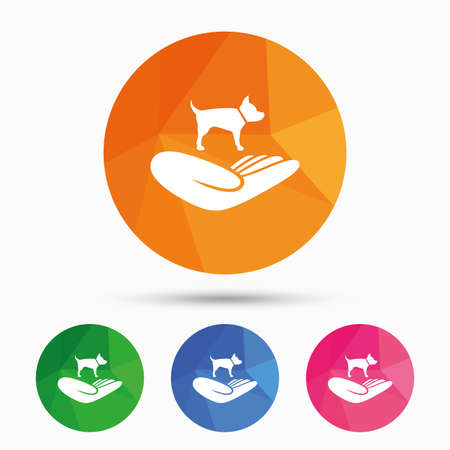 animal shelter: Shelter pets sign icon. Hand holds dog symbol. Animal protection. Triangular low poly button with flat icon. Vector