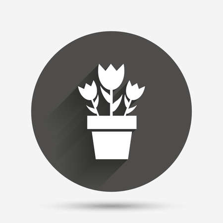 macro flowers: Flowers in pot icon. Bouquet of roses. Macro sign. Circle flat button with shadow. Vector