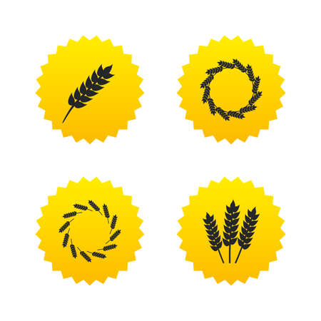 corn stalk: Agricultural icons. Gluten free or No gluten signs. Wreath of Wheat corn symbol. Yellow stars labels with flat icons. Vector