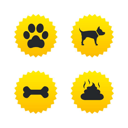 feces: Pets icons. Dog paw and feces signs. Clean up after pets. Pets food. Yellow stars labels with flat icons. Vector
