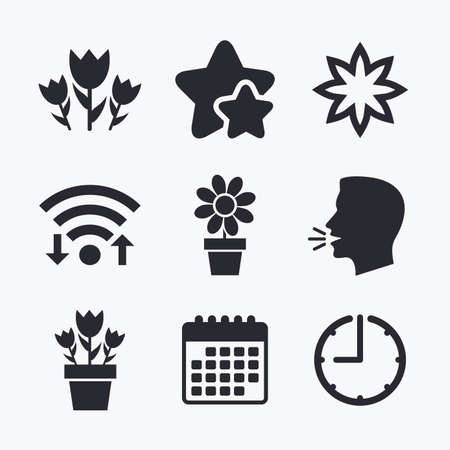 camomiles macro: Flowers icons. Bouquet of roses symbol. Flower with petals and leaves in a pot. Wifi internet, favorite stars, calendar and clock. Talking head. Vector