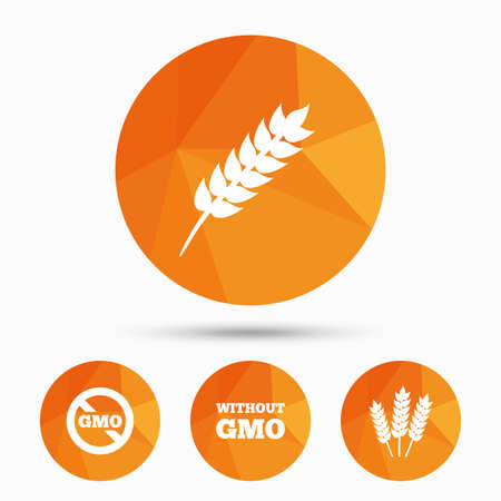 genetically modified crops: Agricultural icons. Gluten free or No gluten signs. Without Genetically modified food symbols. Triangular low poly buttons with shadow. Vector Illustration