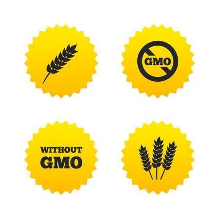genetically: Agricultural icons. Gluten free or No gluten signs. Without Genetically modified food symbols. Yellow stars labels with flat icons. Vector