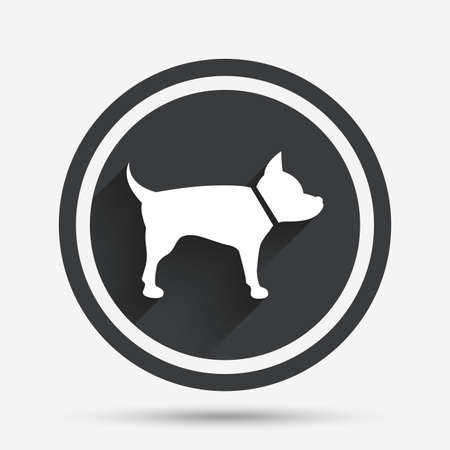 dog allowed: Dog sign icon. Pets symbol. Circle flat button with shadow and border. Vector