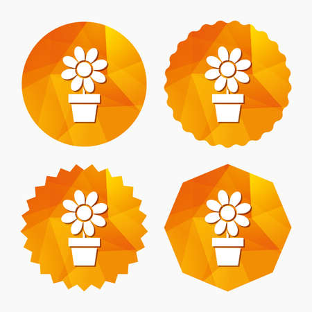 macro flowers: Flowers in pot icon. Bouquet of flowers with petals. Macro sign. Triangular low poly buttons with flat icon. Vector Illustration