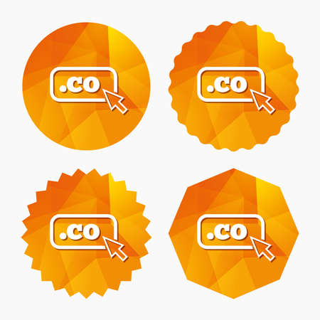 co: Domain CO sign icon. Top-level internet domain symbol with cursor pointer. Triangular low poly buttons with flat icon. Vector