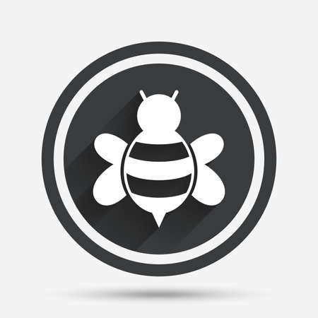 apis: Bee sign icon. Honeybee or apis with wings symbol. Flying insect. Circle flat button with shadow and border. Vector Illustration