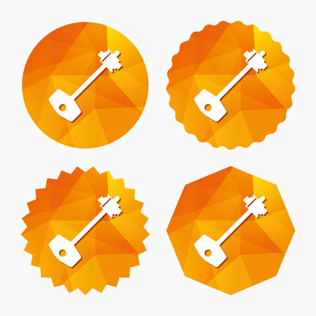 tool unlock: Key sign icon. Unlock tool symbol. Triangular low poly buttons with flat icon. Vector Illustration