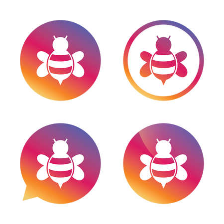 apis: Bee sign icon. Honeybee or apis with wings symbol. Flying insect. Gradient buttons with flat icon. Speech bubble sign. Vector