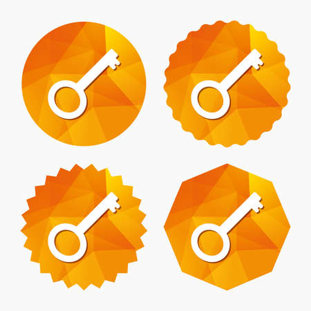 Key sign icon. Unlock tool symbol. Triangular low poly buttons with flat icon. Vector Illustration