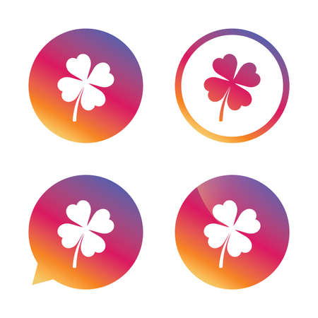 clover buttons: Clover with four leaves sign icon. Saint Patrick symbol. Gradient buttons with flat icon. Speech bubble sign. Vector