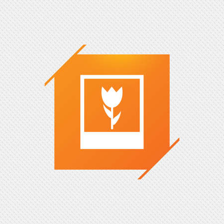 macro flower: Macro photo frame sign icon. Flower photography symbol. Orange square label on pattern. Vector