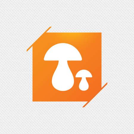 cep: Mushroom sign icon. Boletus mushroom symbol. Orange square label on pattern. Vector Illustration