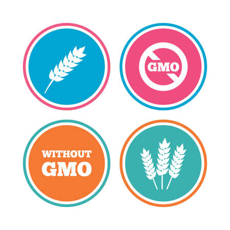 genetically modified crops: Agricultural icons. Gluten free or No gluten signs. Without Genetically modified food symbols. Colored circle buttons. Vector