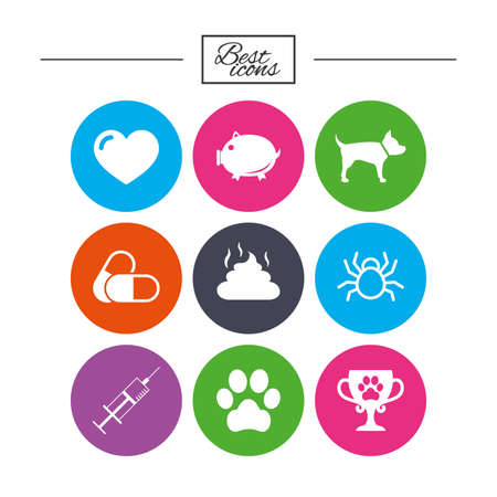 feces: Veterinary, pets icons. Dog paw, syringe and winner cup signs. Pills, heart and feces symbols. Classic simple flat icons. Vector