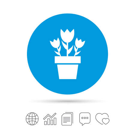 macro flowers: Flowers in pot icon. Bouquet of roses. Macro sign. Copy files, chat speech bubble and chart web icons. Vector Illustration